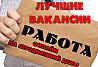 Администратор в крупную компанию Нижнекамск