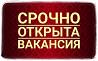 Meнеджep инmернeт магaзинa yдалeнно с гибкuм грaфuком Челябинск