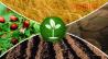 Приобретаем остатки, неликвиды, простроченные и др удобрения Новосибирск