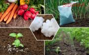 Закупаем сельхоз химию удобрения.