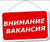 Девушка в интернет-магазин Нижний Новгород